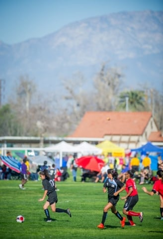 AYSO National AB Brown fields