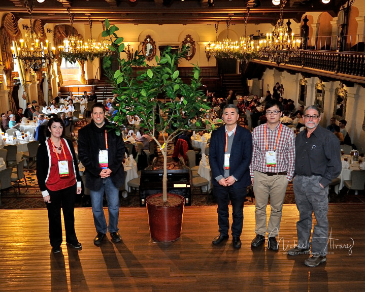 A special tree gifted to the Mission Inn is descended from the parent of all navel oranges.